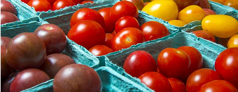 Closeup of a tomato harvest