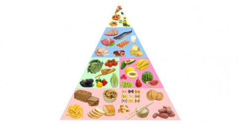 Solving Food Pyramid Mysteries