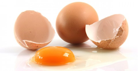 The Mystique of Protein and Its Implications