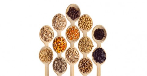 Whole Grains: Good or Bad?