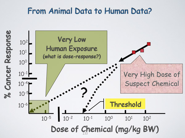 From Animal Data to Human Data