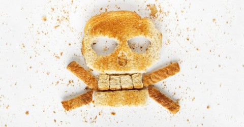 Gluten Fears & Facts: Is Wheat Truly Terrible?