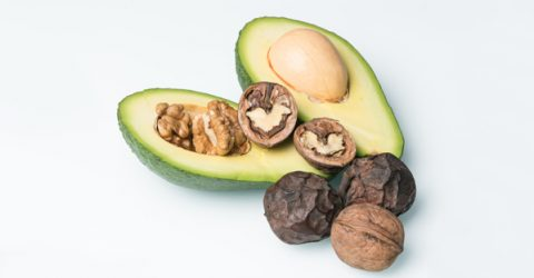 Evidence on Nut Consumption and Human Health