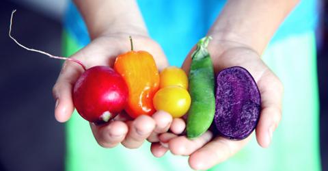 The Fiber Dilemma - Eating Plant-Based Without Tummy Trouble