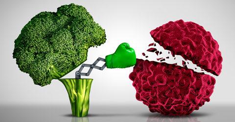 Reinforce Your Immune System Against Viruses Using Nutrition
