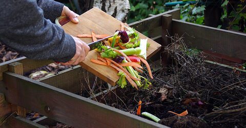Home Composting Made Simple — Compost Guide With Tips for Beginners
