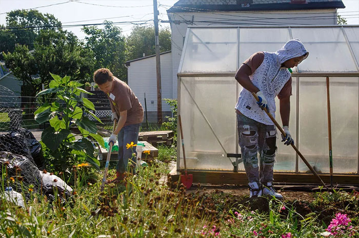The Grass Is Greener Where You Water It - Gardener Helps to Grow Food and a Community
