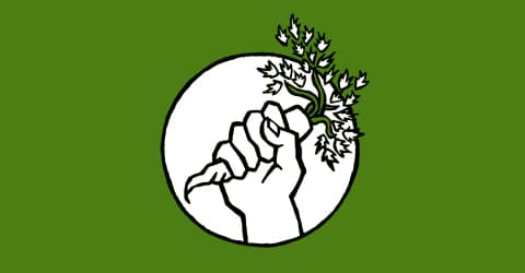 Food and Politics – How To Take Action & Support Sustainability Efforts for Our Future