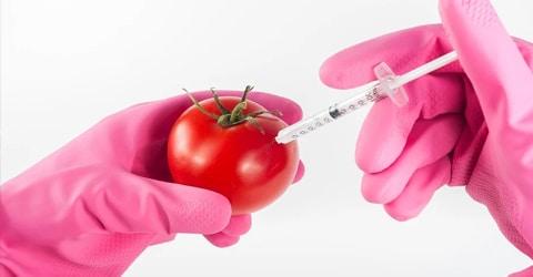 Tendencias alimentarias futuras: ¿Cómo serán las dietas basadas en plantas?