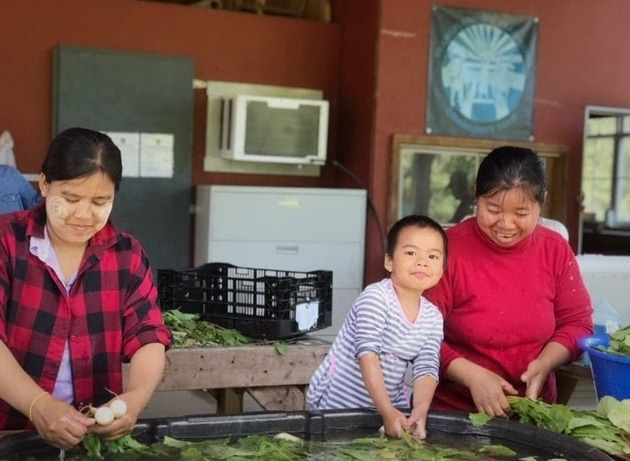 What is Food Sovereignty? 3 Steps for Taking Back Ownership of Our Food