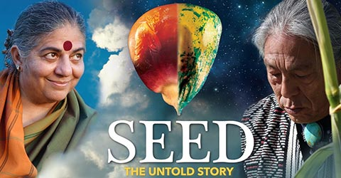 Seeds: Our Global Crisis Plus 5 Actions We Can All Take