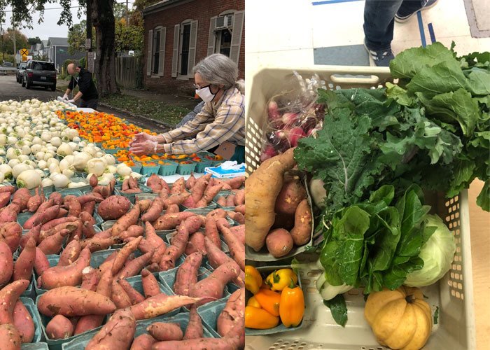 Deeply Rooted Belief in Healthy Food For All