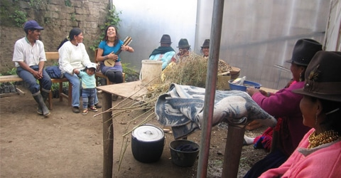 AmaruArts Preserves Culture & Diversity of Life in the Andes With Agriculture & Nutrition